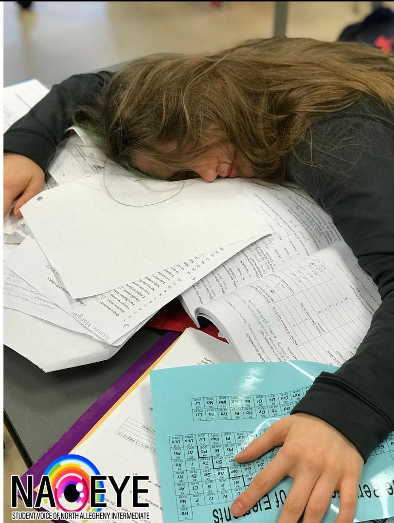 Sophmore Abby Glass catches up on a few Z's during study hall