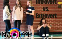 Which Personality Type Are You?