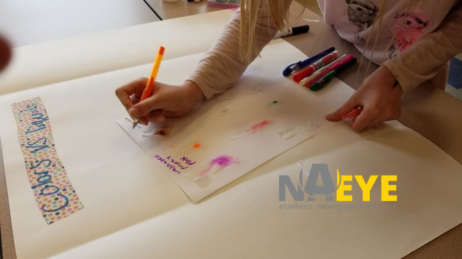 Outside the Classroom Learning: The Many Clubs of NAI