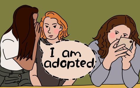 Adoption: Fact vs. Fiction