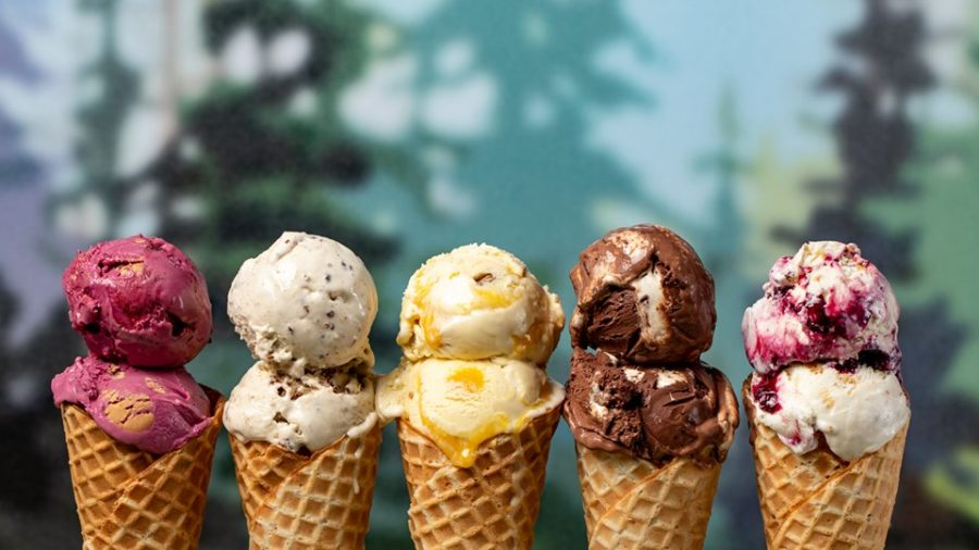 Top 4 Ice Cream Places in Wexford