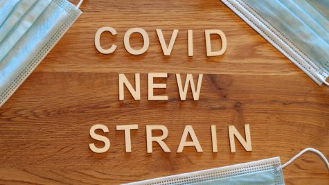 Adding Salt To the Wound: New Covid Strain Threatens the U.S.