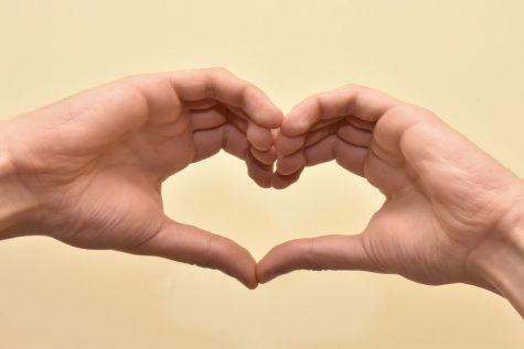 Heart Love Heart Made Of Hands Hands